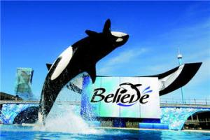 seaworld-san-diego-with-transport-in-anaheim-buena-park-45711